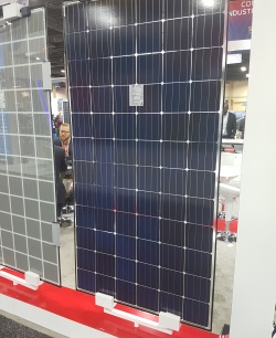 Solar panel with a clear backsheet.